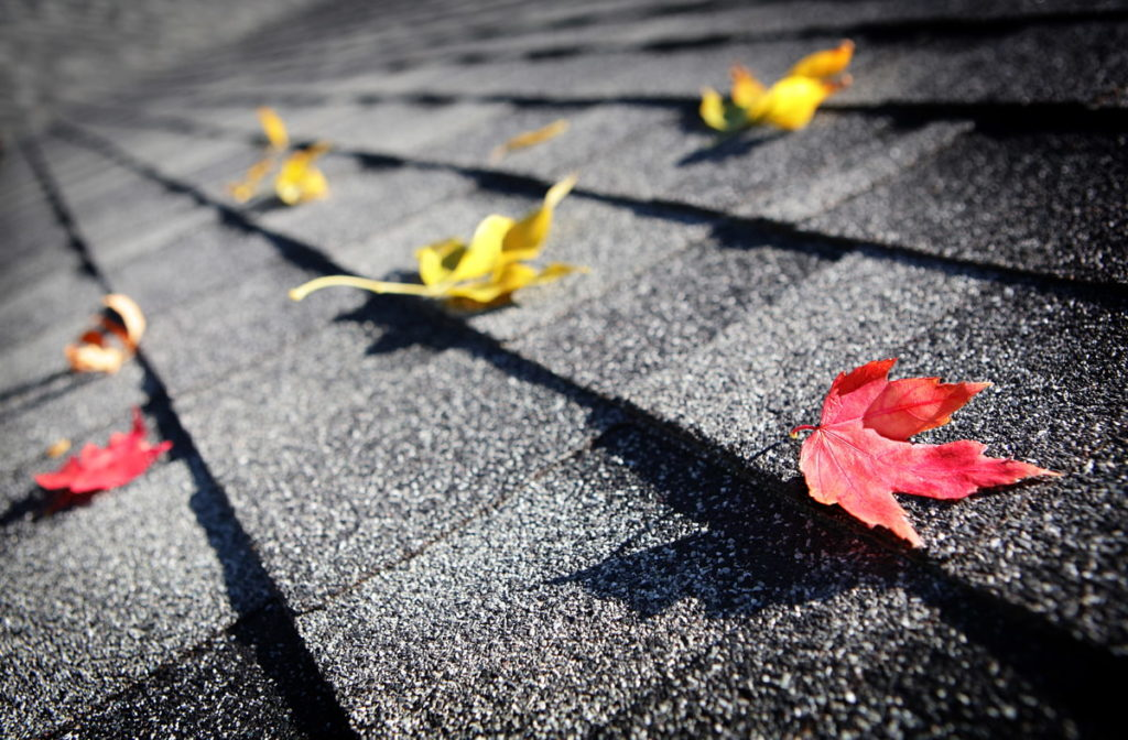 Roof maintenance guides - how to get your roofing ready for Autumn in Surrey
