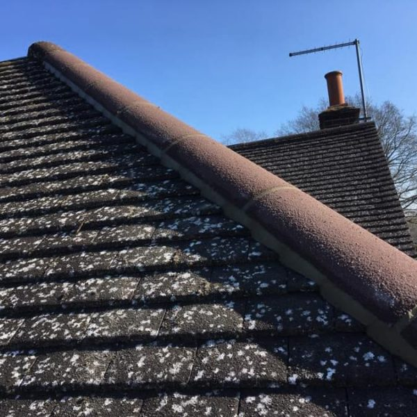 Professional roofing guides - how to know if your roofline is damaged